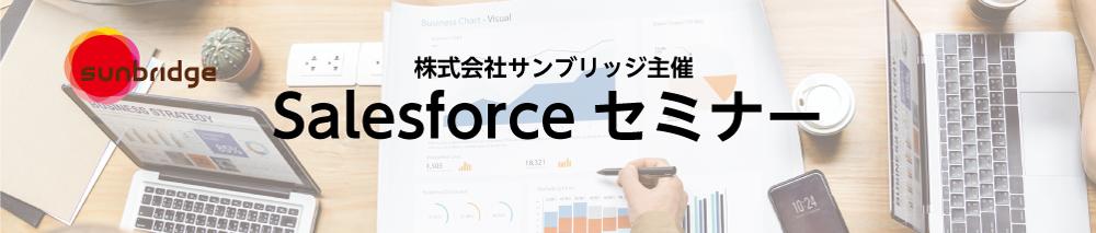 Salesforceを導入するならおさえておきたい!<br>担当者が知っておくべき落とし穴